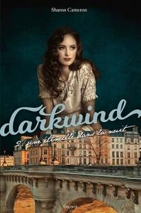 darkwind,-tome-2---a-spark-unseen-780978